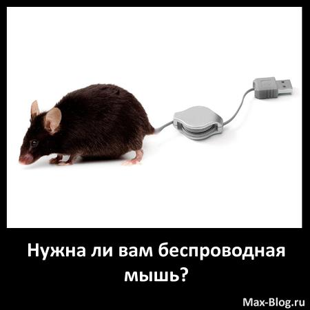 Нужна ли вам беспроводная мышь?